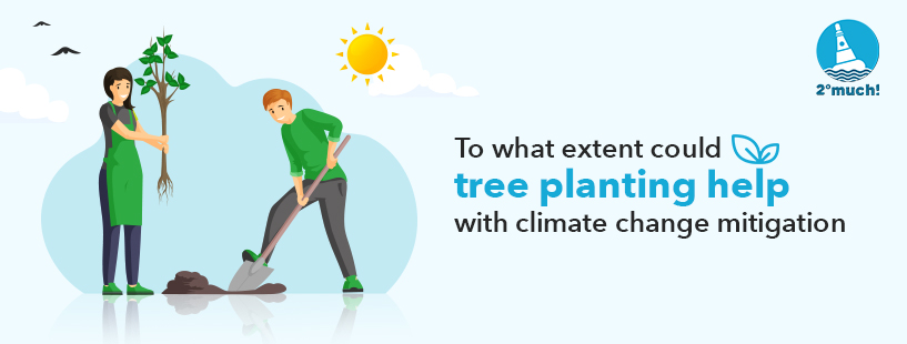 Plant-tree